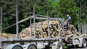 Ceppo di legno del rimorchio del carico dell'uomo archivi video