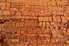 Ceppo di legno di sbriciolatura Fotografia Stock