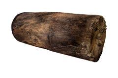 Ceppo di legno isolato Fotografia Stock Libera da Diritti