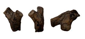 Ceppo di legno isolato Immagine Stock