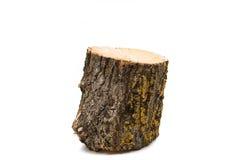 Ceppo di legno isolato fotografie stock libere da diritti