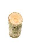 Ceppo di legno isolato sui precedenti bianchi Fotografie Stock