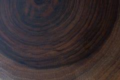 Ceppo di legno tagliato nei pezzi sottili rotondi Immagine Stock Libera da Diritti