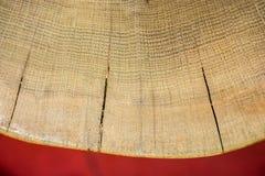 Ceppo di legno tagliato nei pezzi sottili rotondi Immagine Stock