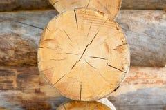 Ceppo, legno Fotografie Stock