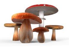 Ceps, paxil, amanita muscaria mushrooms isolated on white 3d illustration Stock Photo