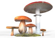 Ceps, paxil, amanita muscaria mushrooms with moss isolated on white 3d illustration Stock Images