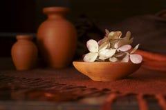Cerámica y flores marchitadas de la hortensia imágenes de archivo libres de regalías