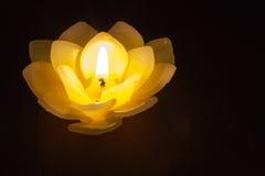Cera da vela nos lótus Fotografia de Stock