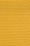 Cera de las células vacías amarillas de las abejas Fotografía de archivo