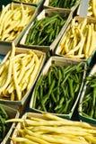 Cera e fagioli verdi Immagini Stock Libere da Diritti