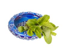 Ceramic ashtray with green mint Stock Image