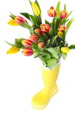 Boot with tulips Royalty Free Stock Photography