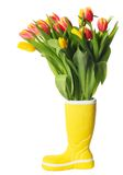 Boot with tulips Royalty Free Stock Photos