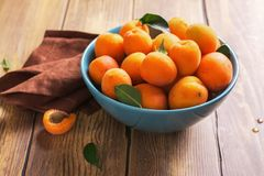 Ceramic bowl of fresh harvested apricots over wooden table. Selective focus Royalty Free Stock Photography