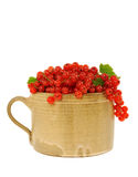 Ceramic cup full of fresh red currant berries. Royalty Free Stock Photography