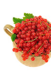 Ceramic cup full of fresh red currant berries Royalty Free Stock Image
