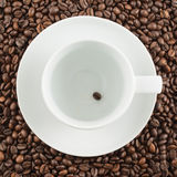 Ceramic cup with one coffee bean. White ceramic cup with one bean inside over covered with coffee surface as a background Royalty Free Stock Photos