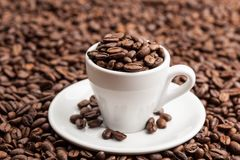 Ceramic Cup in roasted coffee beans Royalty Free Stock Photography