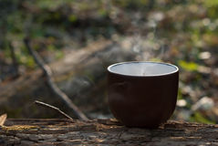 Ceramic cup with vapor Stock Image