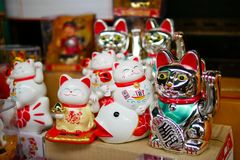 Ceramic doll of Japanese welcome or lucky cat that placed in the box shelf for sell in the souvenir shop. In the market stock images