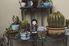 Ceramic doll with succulents in the garden Royalty Free Stock Images
