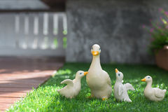 Ceramic ducks on green grass Royalty Free Stock Photo