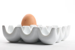 Ceramic egg holder with brown chicken egg Royalty Free Stock Photography
