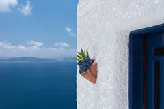 Ceramic flower pot against white wall Royalty Free Stock Photo