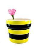 Ceramic flower pot with Artificial flowers. Stock Photography
