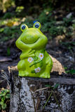 Ceramic Frog Stock Images