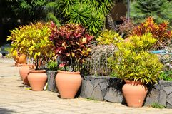 Ceramic garden pot Stock Photo