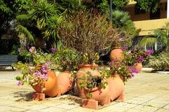 Ceramic garden pot Royalty Free Stock Image