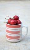 Ceramic glass of ripe cherries Stock Photography