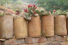 Ceramic hedge Stock Photo