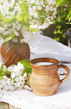 Ceramic jug with fresh new milk on a authentic linen tablecloth and blooming cherry branch. Sprng morning still life Royalty Free Stock Photography