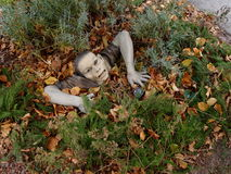 Ceramic Male Zombie Out from Ground. A Ceramic Male Zombie Display on the Ground among bushes Royalty Free Stock Photo