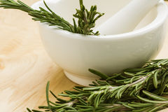 Ceramic mortar and fresh organic rosemary Royalty Free Stock Photo