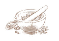 Ceramic mortar with herbs and spices Stock Image