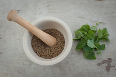 Ceramic mortar with mint and anise Stock Image