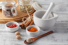 Ceramic Mortar with Pestle and fresh spices Stock Images