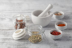 Ceramic Mortar with Pestle and fresh spices Stock Photography