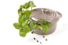 Ceramic pan with herb Stock Image