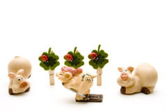 Ceramic pig on ski Royalty Free Stock Photography