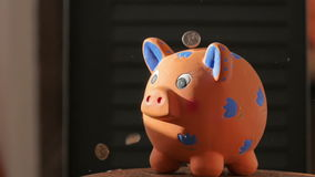 Ceramic piggy bank. Coins falling into piggy bank stock video