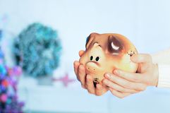 Ceramic piggy bank piggy in the hands of the girl. stock photo