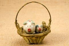 Ceramic pigs Stock Photo