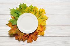 Ceramic plate and fallen leaves on a white wood background royalty free stock photo