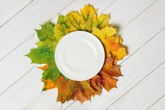 Ceramic plate and fallen leaves on a white wood background top royalty free stock photos