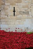 Ceramic poppies at Tower of London Stock Photography